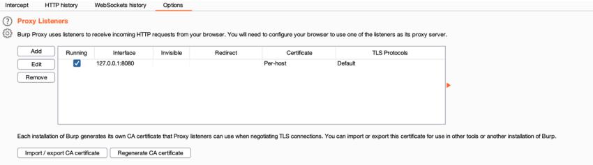 Tráfego de dados - servidor Proxy – BURP